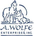 amy wolfe enterprise